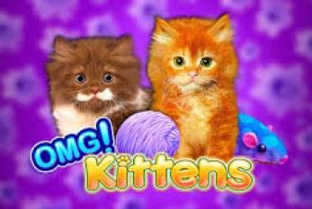 OMG Kittens