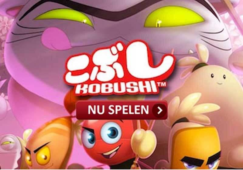 kobushi-gokkast-nu-spelen