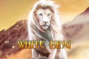 Slots spel gratis king