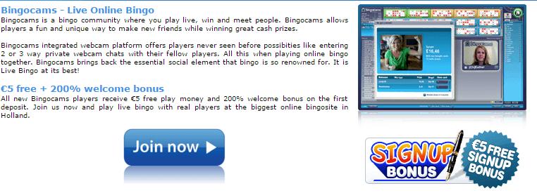 FruitkingsPlaza Review BingoCams