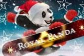 Tel af tot 2016 met Royal Panda!