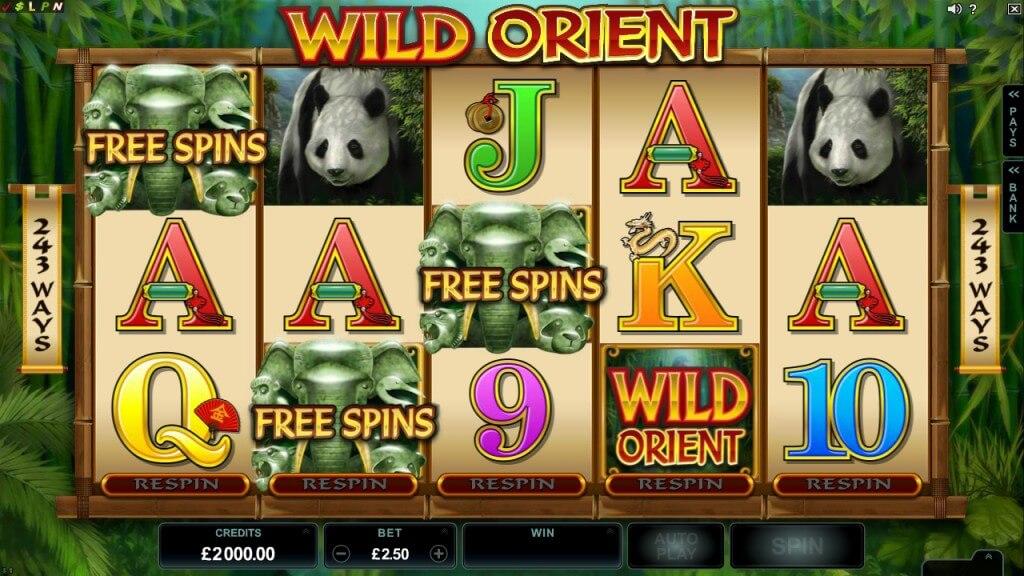 De free spins in Wild Orient