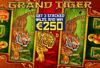 Win € 250 op Grand Tiger bij de Polder Uitdaging