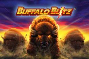 Buffalo Blitz Uitgelicht
