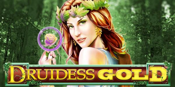 Druidess Gold Welkomst