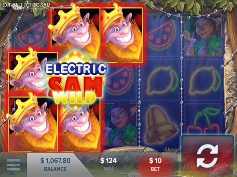 Electric Sam Wild