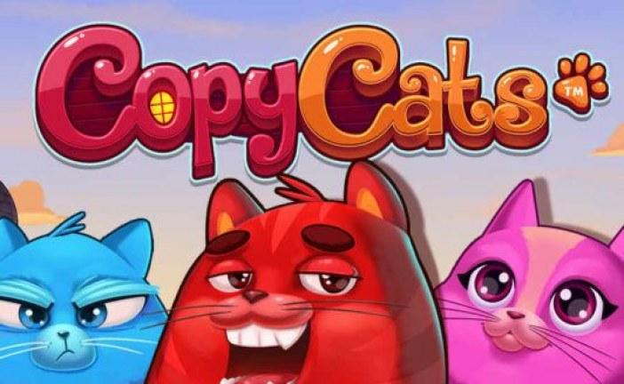 Speel Copy Cats nu Exclusief bij Gokkasten Speelautomaten