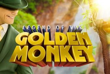 Win Cash Prijzen met Golden Monkey!